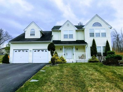 Dutchess County Single Family Home New: 22 Ash Rd