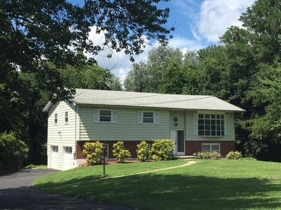 Poughkeepsie Twp Single Family Home For Sale: 12 Earlwood Dr