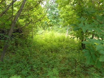 Pleasant Valley Residential Lots & Land For Sale: 65 Ohalloran Circle