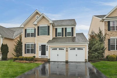 Dutchess County Condo/Townhouse New: 204 Roosevelt Dr