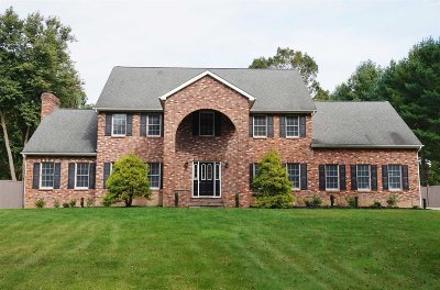 East Fishkill Single Family Home For Sale: 53 Athenian Ln