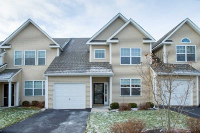 Dutchess County Condo/Townhouse New: 25 Halley Ct