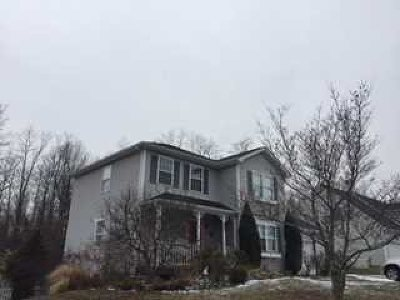 Dutchess County Single Family Home New: 8 Misty Ridge Circle