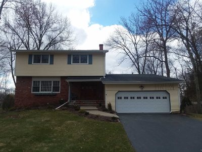 Poughkeepsie Twp Single Family Home For Sale: 13 Panessa Dr
