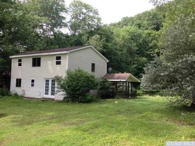Amenia Single Family Home For Sale: Bog Hollow Rest