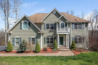 Pawling Single Family Home Continue Showing: 147 Highlands Dr