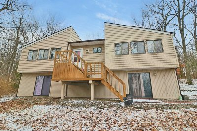 East Fishkill Single Family Home For Sale: 7 Ridge Rd