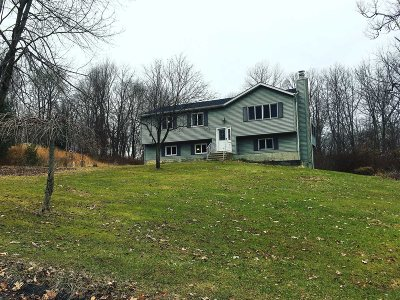 Pawling Single Family Home For Sale: 145 Mountain View Dr