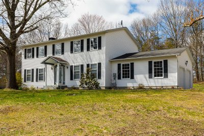 Dutchess County Single Family Home New: 191 Cooper Dr