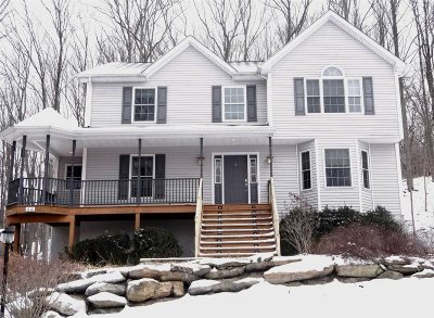 East Fishkill Single Family Home For Sale: 44 Palen Rd