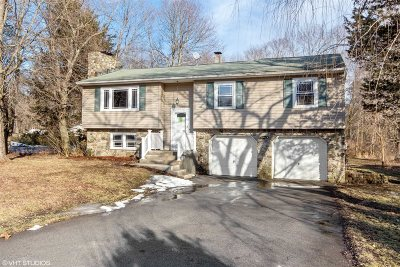 Pleasant Valley Single Family Home Continue Showing: 64 Forest Valley Rd