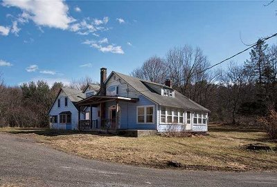Columbia County, Dutchess County, Orange County, Putnam County, Ulster County, Westchester County Single Family Home For Sale: 149 Eagle
