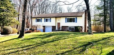 Pleasant Valley Single Family Home Continue Showing: 40 Briar Patch Ln