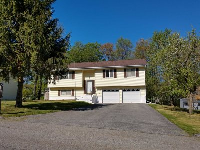 Wappinger Single Family Home Continue Showing: 15 Nicole