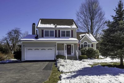 East Fishkill Single Family Home Continue Showing: 323 Carey Rd