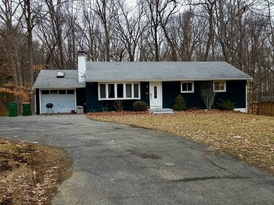 Wappinger Single Family Home For Sale: 317 Myers Corners Rd