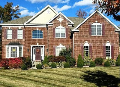 Wappinger Single Family Home For Sale: Doolin Ct
