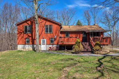 Pawling Single Family Home For Sale: 188 N White Rock Rd