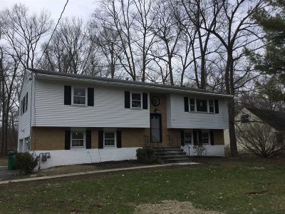 Wappinger Single Family Home For Sale: 25 Pippin Ln
