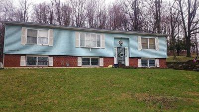 Hyde Park Single Family Home For Sale: 159 South Quaker Ln