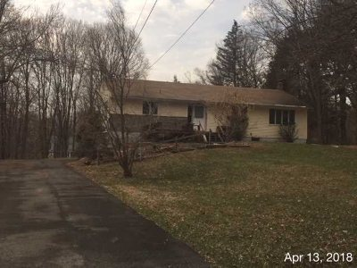 Rhinebeck Single Family Home New: 17 Pilgrims Progress Ro