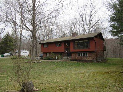 Putnam County Single Family Home New: 65 E Tiger Trail
