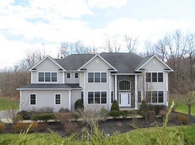 Dutchess County Single Family Home New: 23 Brian Ct