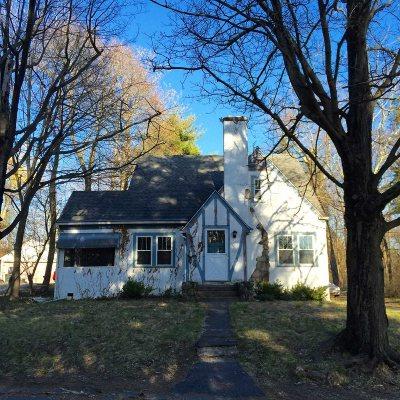 Dutchess County Rental New: 18 Meadow Rd