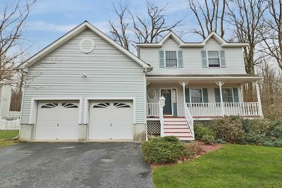 Wappinger Single Family Home For Sale: 48 Mina Dr
