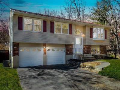 Dutchess County Single Family Home New: 20 Panessa Dr