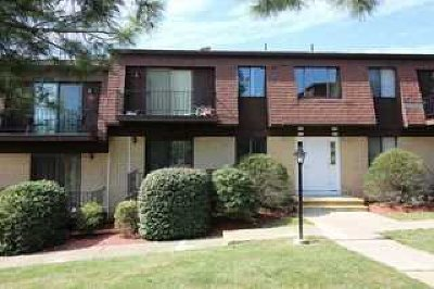 Poughkeepsie Twp Condo/Townhouse Continue Showing: 613 Cherry Hill Dr