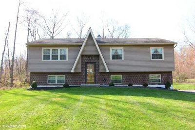 East Fishkill Single Family Home Continue Showing: 44 Queen Anne Lane