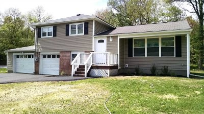 Poughkeepsie Twp Single Family Home New: 528 Vassar Rd