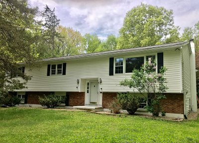 Pleasant Valley Single Family Home Continue Showing: 42 Denise Ct