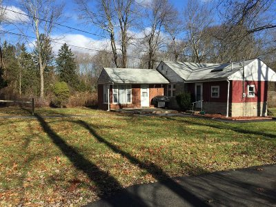 East Fishkill Single Family Home For Sale: 234 Ressique
