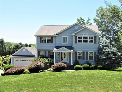 Dutchess County Single Family Home New: 21 Beach Rd.