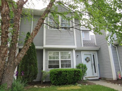 Pawling Condo/Townhouse For Sale: 2 Evergreen Way