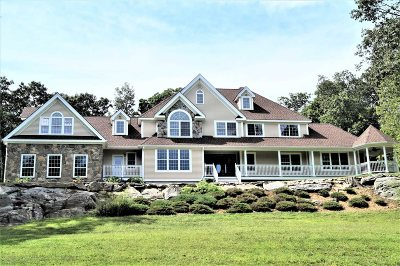 East Fishkill Single Family Home New: 291 Woodmont Rd