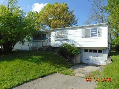 Beacon Single Family Home For Sale: 25 Heaney Dr