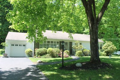 Dutchess County Single Family Home New: 53 Homer Pl