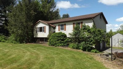 Dutchess County Single Family Home New: 46 Cunningham Ln