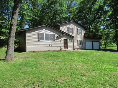 East Fishkill Single Family Home For Sale: 1 King Rd