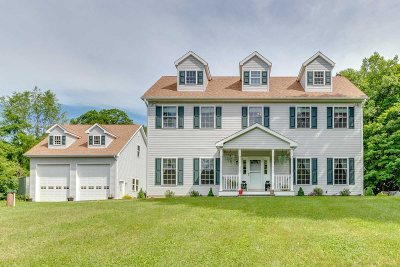 East Fishkill Single Family Home For Sale: 446 Holmes Rd