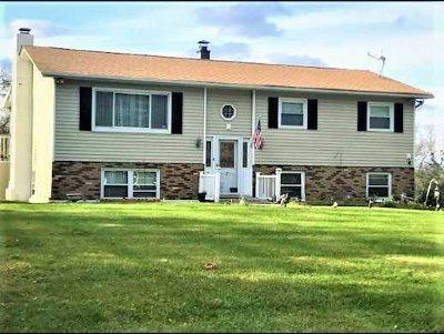 East Fishkill Single Family Home For Sale: 7 Gung Ho Rd