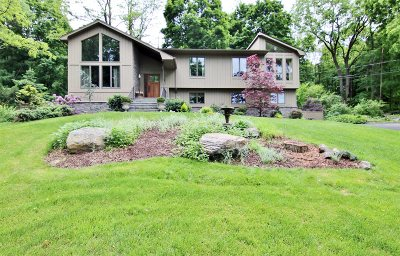 East Fishkill Single Family Home For Sale: 2 Short Ct