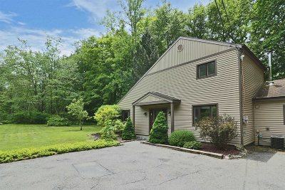 Pawling Single Family Home New: 913 Route 292