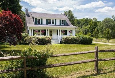 Dutchess County Single Family Home New: 3680 Route 44