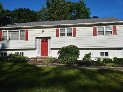 Dutchess County Single Family Home New: 3 Meadow Lane