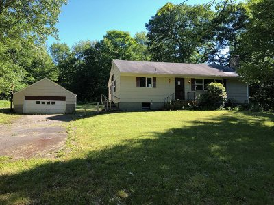 Pawling Single Family Home New: 198 N White Rock Rd