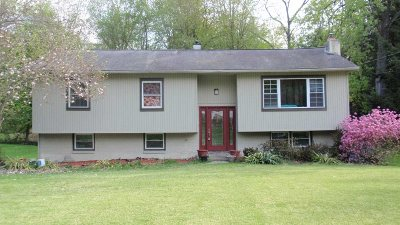 Hyde Park Single Family Home For Sale: 4 Albie